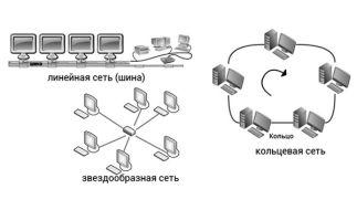 Основные компоненты и разновидности компьютерных сетей