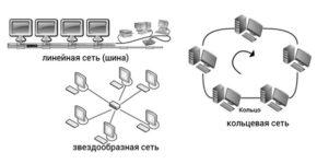 osnovnye-komponenty-i-raznovidnosti-kompyuternyx-setej