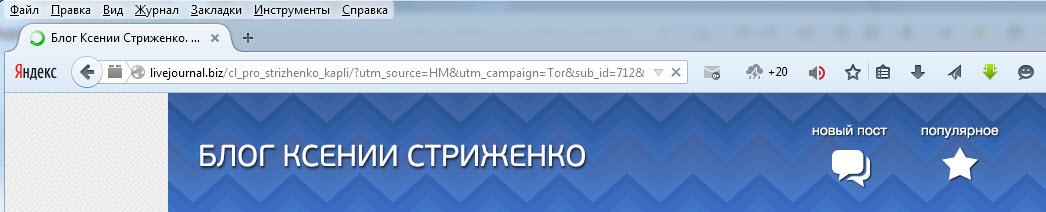 блог ксении стриженко