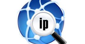 kak-uznat-ip-adres-sajta